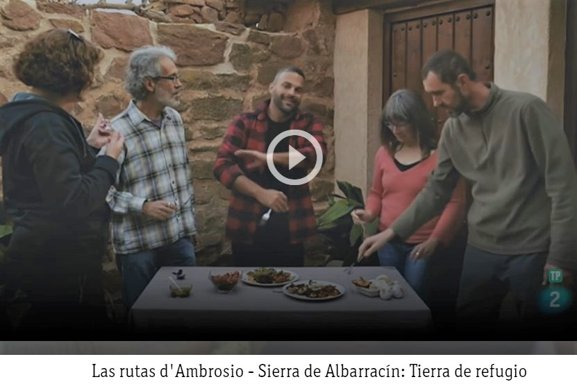 casa rural espigas altas sierra de Albarracin