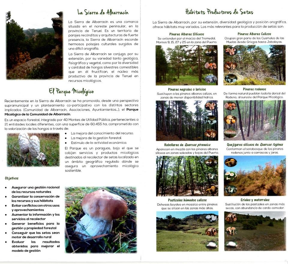 Parque Micológico de la Comunidad de Albarracín